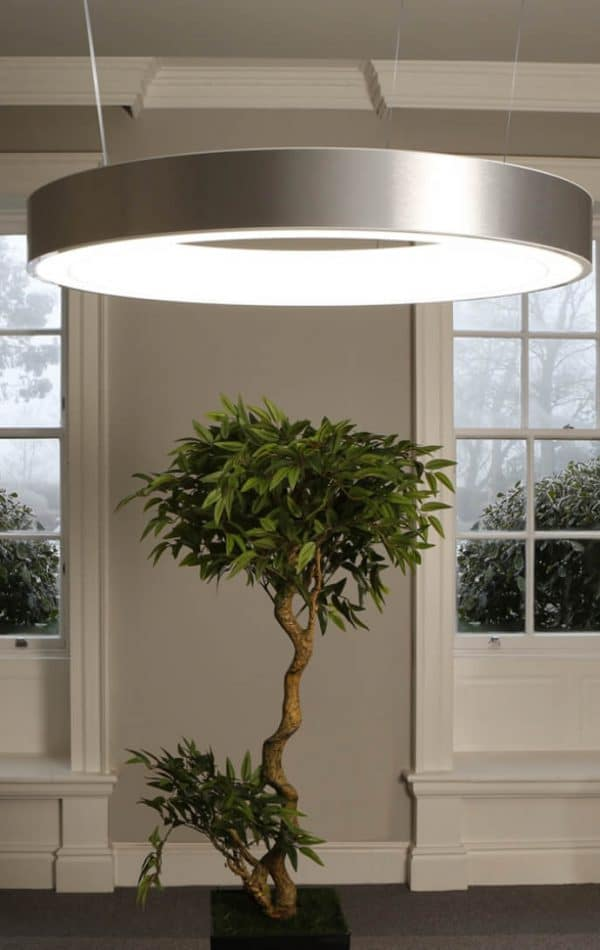 Domestic bespoke lighting